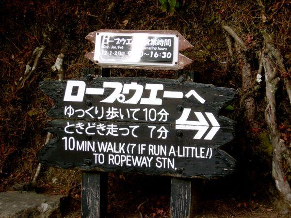 Viaje a Japon por libre: Miyajima