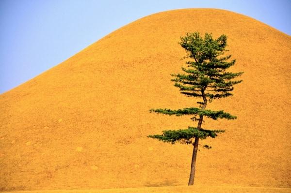 Tumulo Gyeongju, Corea del Sur