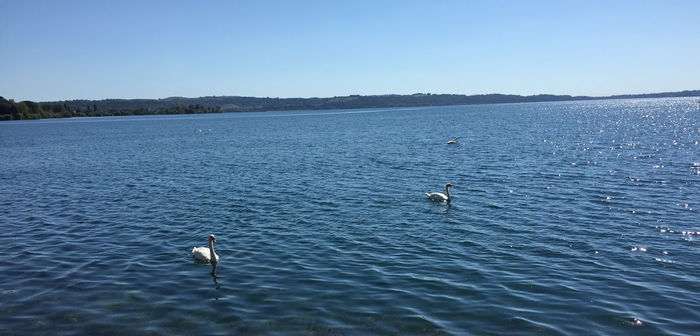Viaje a Roma y Nápoles con dos niñas gemelas: Trevignano Romano (Lago Bracciano) – Día 2