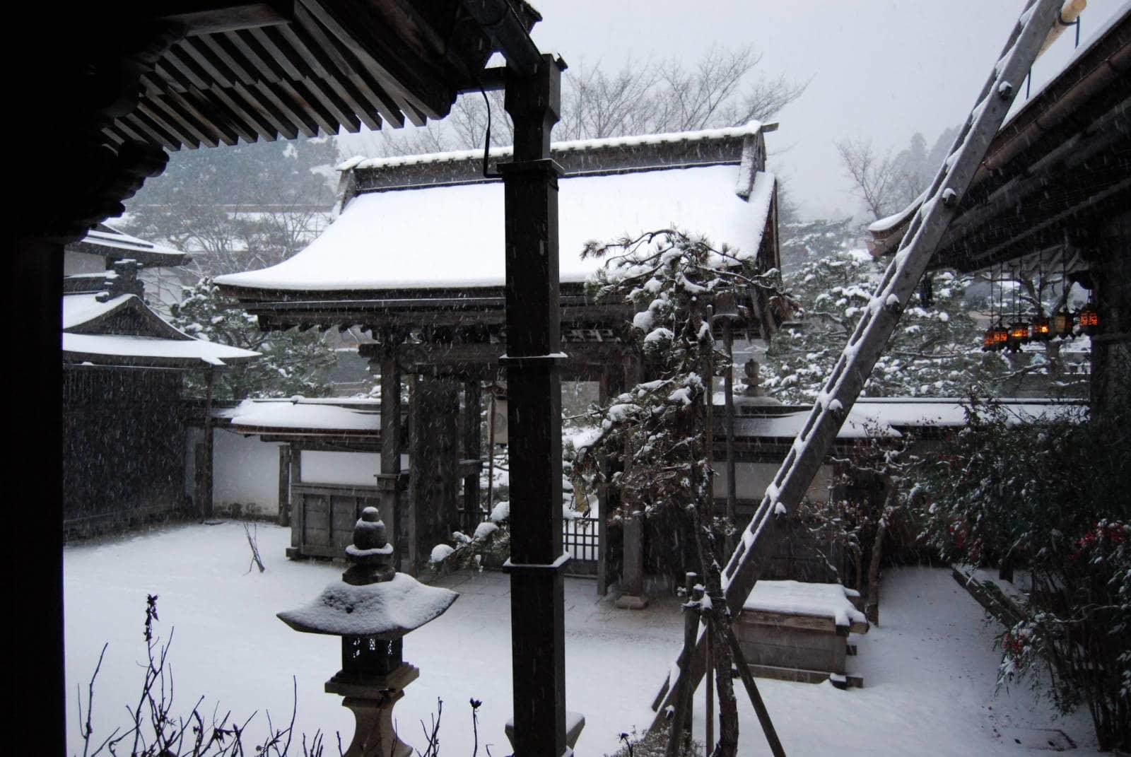 Japon-houtinee-1